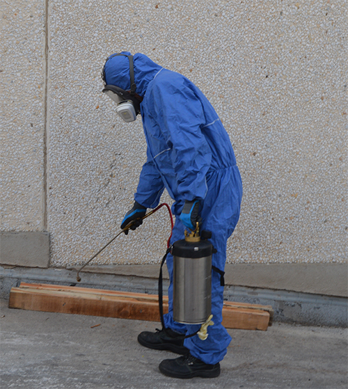 El presupuesto para control de plagas y desodorizar alcantarillas subirá un 15 %