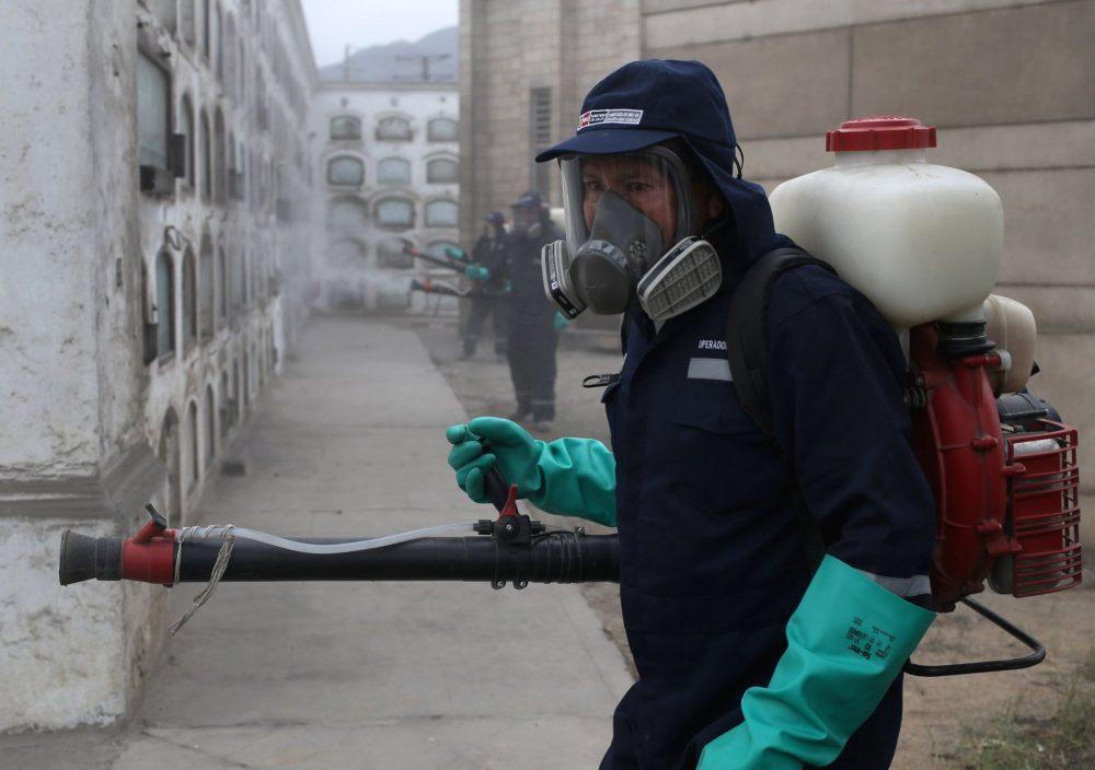 La OMS respalda el uso de mosquitos transgénicos para combatir el zika