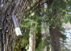 Inyectar fertilizantes al tronco del árbol como medida antiplagas