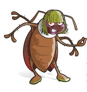 Las cucarachas, la principal plaga que asola España