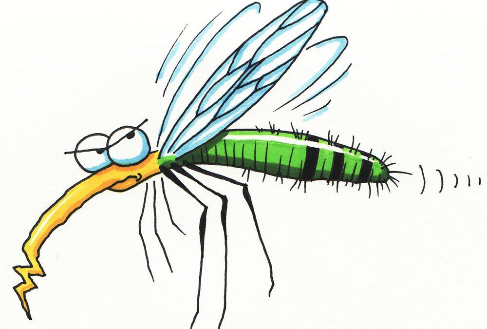 Medidas preventivas contra mosquitos