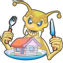 ¿Cómo acceden las termitas subterráneas a las viviendas?