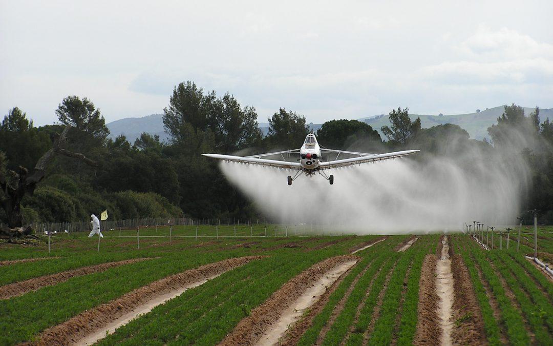 Expertos piden no abusar de los fitosanitarios por el efecto rebote